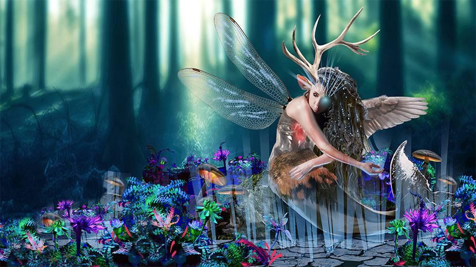 Im Zauberwald 2019 kann man das Werk  «Nosceteipsum» bestaunen. Es kommt von den Künstlerinnen Natalie Wallrapp und Manuela Hofer-Aggeler. (© zVg)
