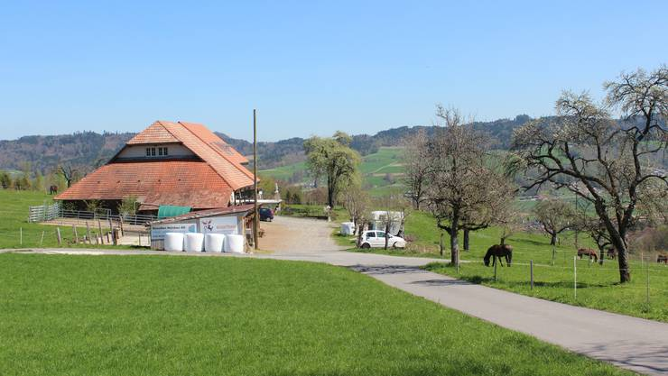 Der «Steinig»-Hof liegt oberhalb von Gontenschwil.