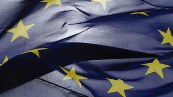 Bei den EU-Kohäsionsgeldern lag die Budget-Fehlerquote besonders hoch (Symbolbild)