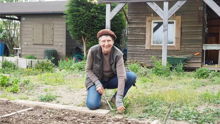 «Der Garten bietet die Möglichkeit, die Natur hautnah zu erleben»: Brigitte Denk, 54, Kulturschaffende, seit 2010 auf Neuland, Vizepräsidentin des gleichnamigen Familiengartenvereins.