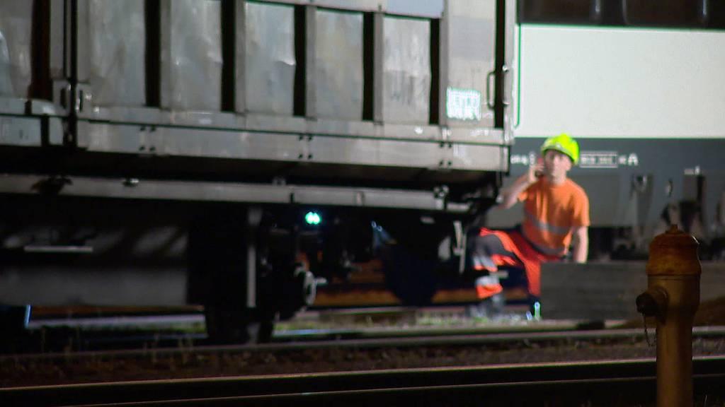 Entgleisung: Güterzug in Romanshorn auf Abwegen