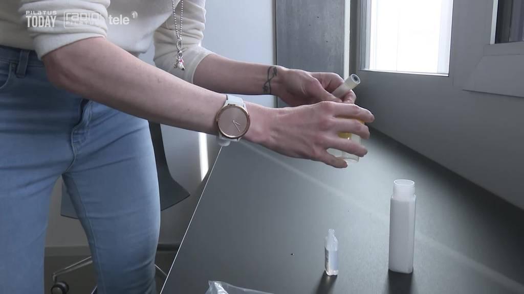 Massentests in Luzerner Betrieben angelaufen: «Wie verlängertes Zähneputzen»