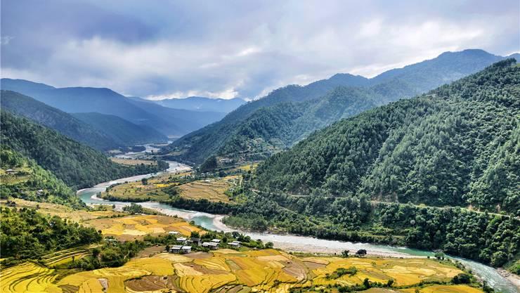 Wie eine schimmernde Riesenschlange fliesst der Punakha-Fluss durchs gleichnamige Tal im Westen Bhutans. An seinen Ufern wachsen Reis und Legenden über schaurige Donnerdrachen. Samuel Schumacher