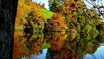 So schön ist der Herbst im Limmattal