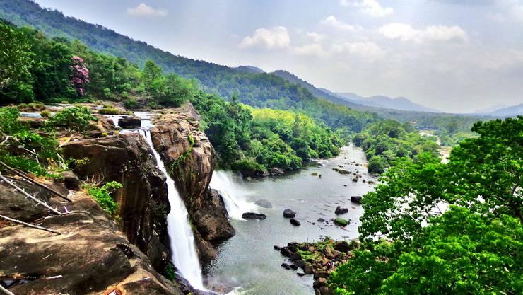 In den abwechslungsreichen Landschaften des Bundesstaats Kerala sind 500 Vogelarten heimisch.