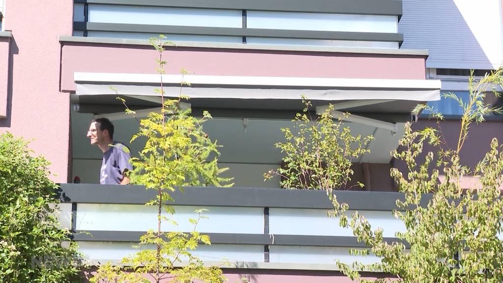 Polizeieinsatz in Spiegel, BE: 65 Hanfpflanzen sichergestellt