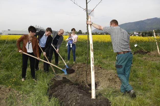 Beim Einpflanzen packen CEO Thomas Wahl und Gemeindepräsidentin Silvia Spycher kräftig zu