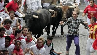 Wagemutige laufen mit den Kampfstieren durch die Gassen Pamplonas