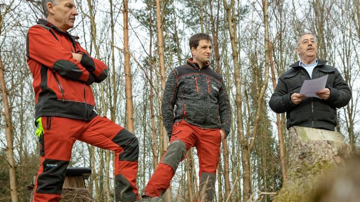 Für 100 Franken kauft ein Pate oder eine Patin einen Baum, der von Förstern in eine kahle Waldstelle gepflanzt wird.