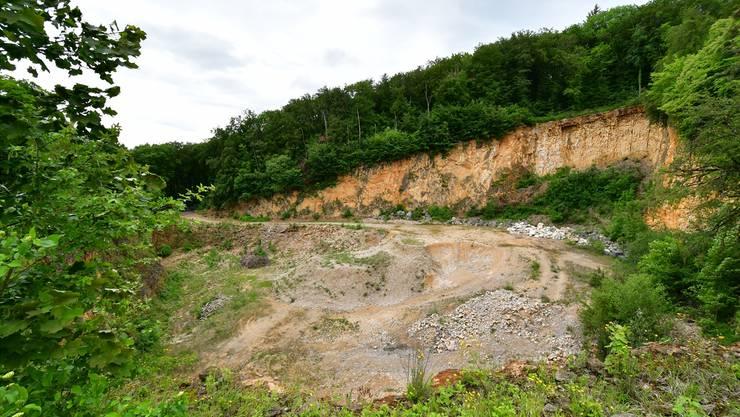 Steinbruch Gugen in Erlinsbach SO: Blick Richtung Westen, wo die Erweiterung geplant ist.