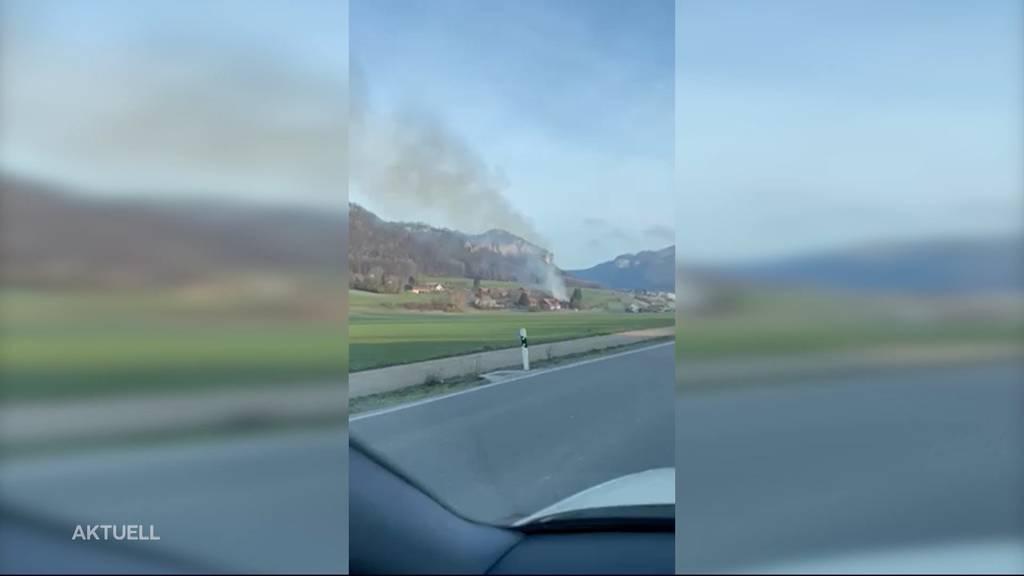 Brand in Bauernhaus in Niederbipp BE: Zwei Hunde sterben dabei