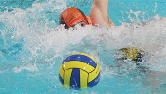 Die Wasserballer des WSC Dietikon erkämpften sich gegen Tristar einen Sieg.