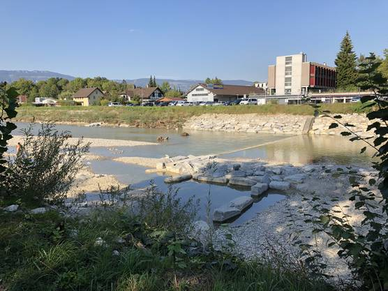 Hochwasserschutz- und Revitalisierungsprojekt