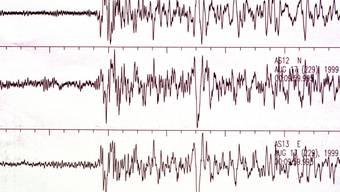 Ein schweres Erdbeben hat den Norden Afghanistans und Pakistans erschüttert. Die Erdstösse waren bis in die Hauptstädte Kabul und Islamabad zu spüren. Angaben über Opfer liegen noch keine vor. (Symbolbild)