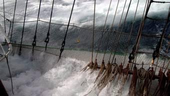 Wegen des bevorstehenden Taifuns sind Rugby-WM-Spiele vom Samstag abgesagt worden
