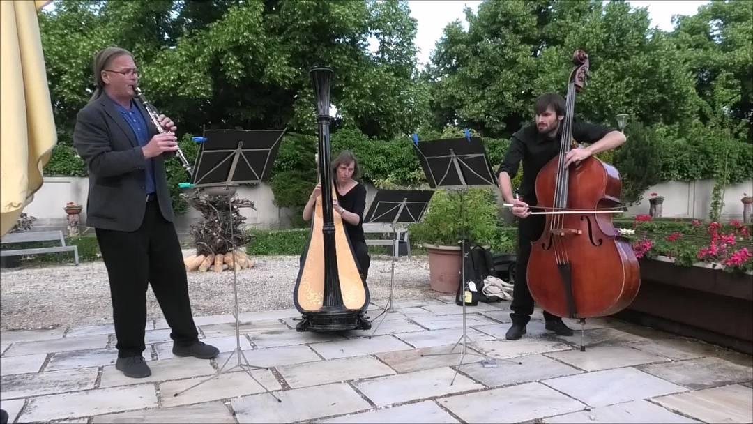 Konzert dreier Musiker vom Sinfonie Orchester Biel Solothurn im Oltner Klostergarten