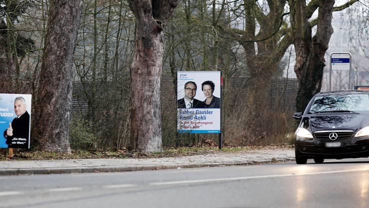 Die guten alten Wahlplakate – bereits zieren die ersten Exemplare die Strassenränder im Kanton Solothurn. Felix Gerber
