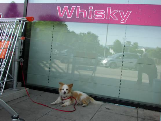 Heisst du Whisky ?