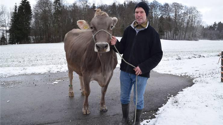 Jakob Wiederkehr mit seiner Kuh Bellona in Jonen.Fotos: Johanna Lippuner