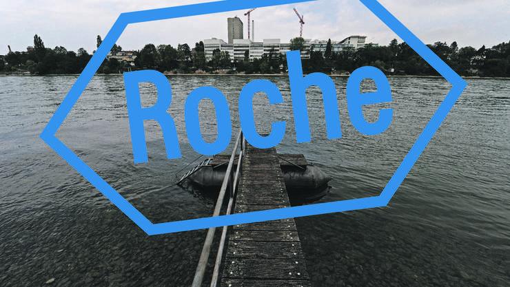 Viel Geld fliesst in die Taschen der Roche-Aktionäre