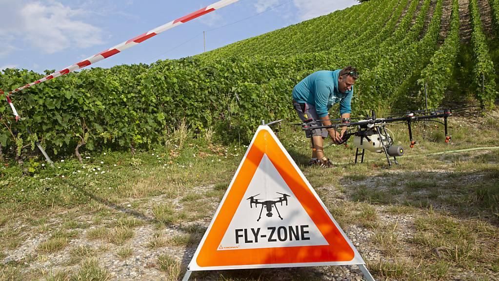 Drohnen sollen künftig Unkraut bekämpfen. (Symbolbild)