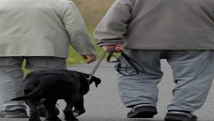Die Polizei warnt Hundehalter in Spreitenbach. Symbolbild/Wal