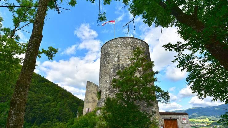 Ein ungewohnter Anblick: die Burg Alt-Falkenstein von Osten her.