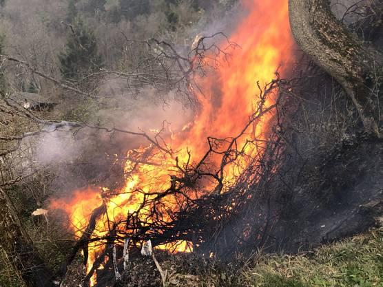 Blauen BL, 29. März: Entsorgte Asche führte zu Brandausbruch und erfordert Feuerwehreinsatz.