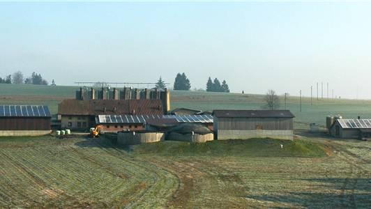 Auf vier Dächern des landwirtschaftlichen Betriebs von Philipp Barmettler sind 1204 Photovoltaik-Module angebracht.Fotos: egu