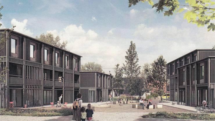 Die Studie «Löwenzahn» der Aarauer «Parc Architekten» hat den Wettbewerb für eine Überbauung des Areals hinter der katholischen Kirche gewonnen.