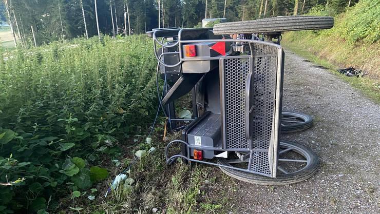 Brittnau AG, 12. Juli: Auf einem Waldweg bei Brittnau kippt eine Kutsche, die mit sieben Personen besetzt ist. Es handelt sich um vier Frauen und drei Männer im Alter zwischen 22 und 67.
