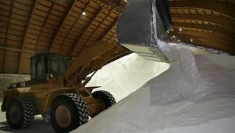 Die Schweizer Salinen müssen ohne Salz aus der Rütihard in Muttenz BL auskommen. Das Projekt wird für mindestens 20 Jahre sistiert.