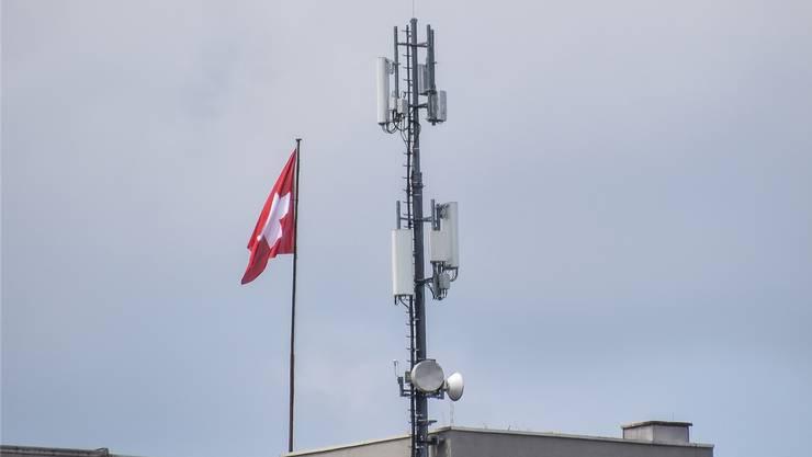 5G-Antenne auf einem Getreidesilo in der Trifoore. Bild: to