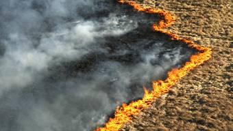 Warnung vor immer grösseren Flächenbränden