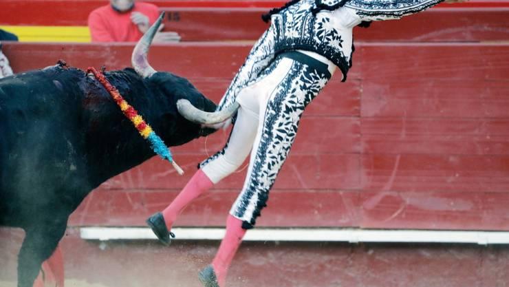Enrique Ponce wurde zunächst von dem Stier am Gesäss aufgespiesst und fiel dann so unglücklich, dass er sich das linke Bein verdrehte.