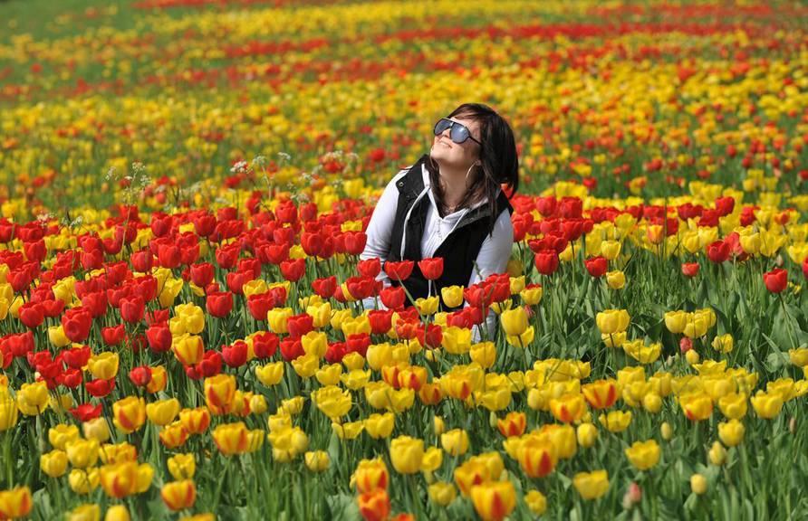 Blumenpracht in Mainau. (Bild: KEYSTONE/EPA/Patrik Seeger)