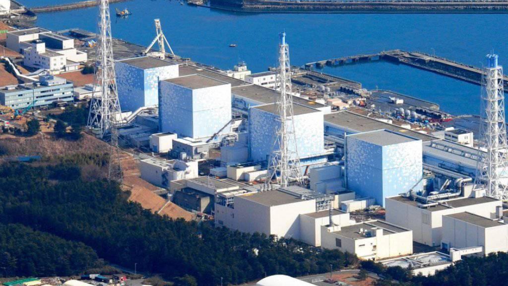 Das intakte AKW im japanischen Fukushima am 12. März -nach dem schweren Erdbeben, aber vor der Explosion, die wichtige Teile der Anlage zerstörte. (Archivbild)