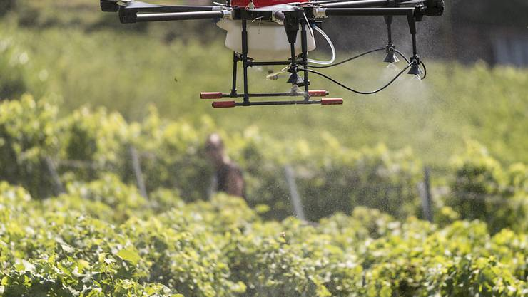 Die landwirtschaftliche Forschung wird nicht zentralisiert, sondern weiterhin in verschiedenen Regionen durchgeführt. (Archivbild)