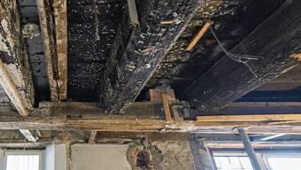 Die Kantonsarchäologie entdeckte diese stark verkohlte Dachbalken im Westflügel des Klosters Gnadenthal.