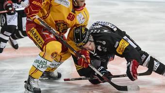 Ein Bild mit Symbolcharakter: Fribourgs Chris Rivera (rechts) muss im Zweikampf mit dem Langnauer Anton Gustafsson unten durch