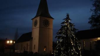 Die Geschichte der Tanne, die ein Weihnachtsbaum sein wollte