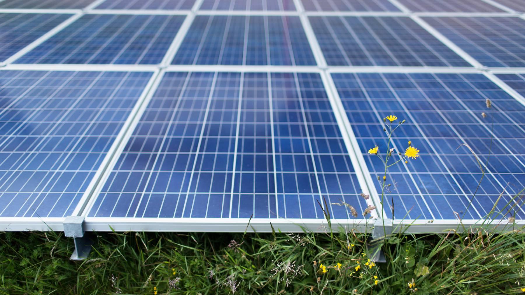 Dem Parlament geht es beim Ausbau erneuerbarer Energien nicht schnell genug.