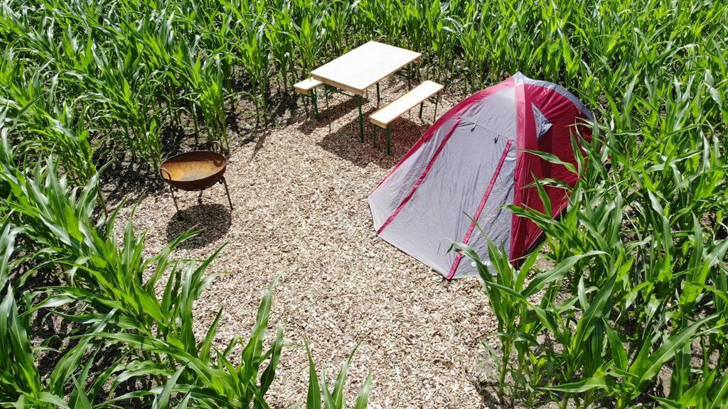 Auf diesen Campingplätzen bist du für dich allein