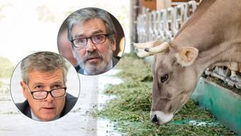 Eine Kuh ohne Hörner ist wie ein Elefant ohne Rüssel, findet Roberto Zanetti. Anderer Meinung ist Thomas de Courten