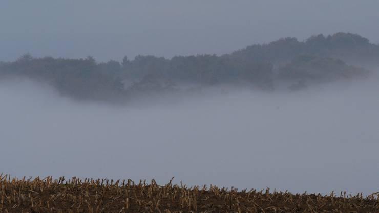 Noch im  Nebel: Der Nutzen regionaler Zusammenarbeit scheint vielen Gemeindevertretern noch zu wenig greifbar.