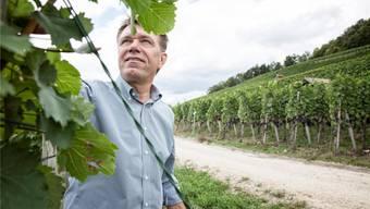 «Den ganzen Schaden hat Bayer wohl niemandem bezahlt.» Andreas Meier, Geschäftsführer Weingut zum Sternen.