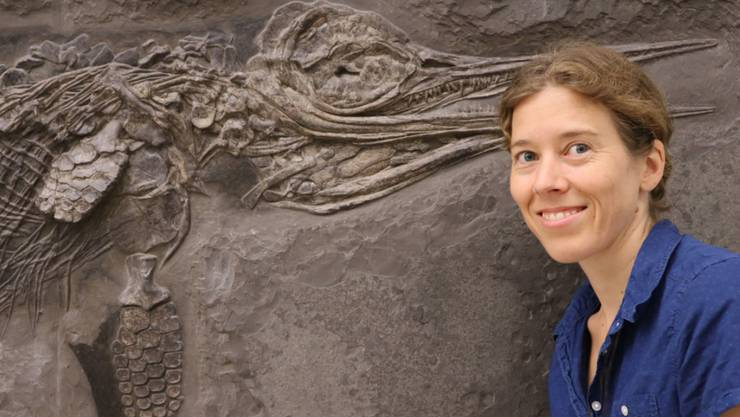 Die Paläontologin Dr. Erin Maxwell vom Staatlichen Museum für Naturkunde in Stuttgart und der Hauffiopteryx typicus, beide lächelnd. Der Fischsaurier war zwar schon bekannt, war aber falsch klassifiziert worden. (Pressebild)