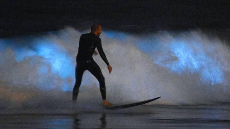 In Kalifornien wurde ein Surfer von einem Hai angegriffen. (Symbolbild)