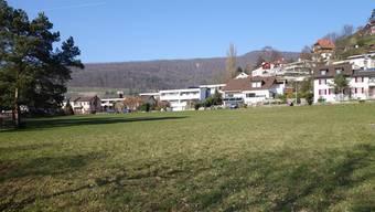 Auf dem Areal Langäcker sind die Wohnungen geplant.