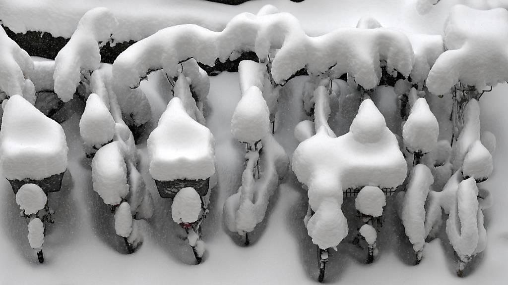 Engelberger bieten Unterländern Schneekurs an